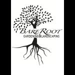 web-design-yorkshire-Bare-Root